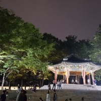 Seoul's TOP 5  Romantic Places for Couples